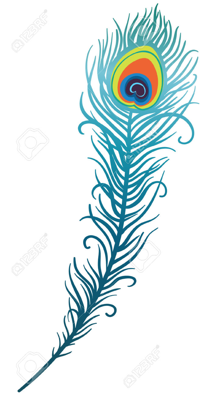 723x1300 Feather Clipart Peacok