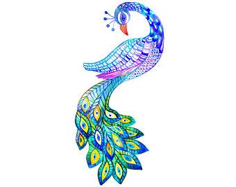 2326a5b25a9 340x270 Peacock Clipart Graphic Design