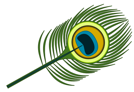 457x313 Peacock Clipart Leaf