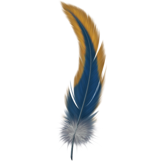 512x512 Feather Hd Png Transparent Feather Hd.png Images. Pluspng