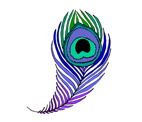 470x403 Giant Peacock Feather On White Fabric