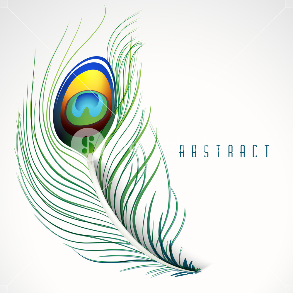 1000x1000 Peacock Inspired Abstract Feather Background In Vector Format