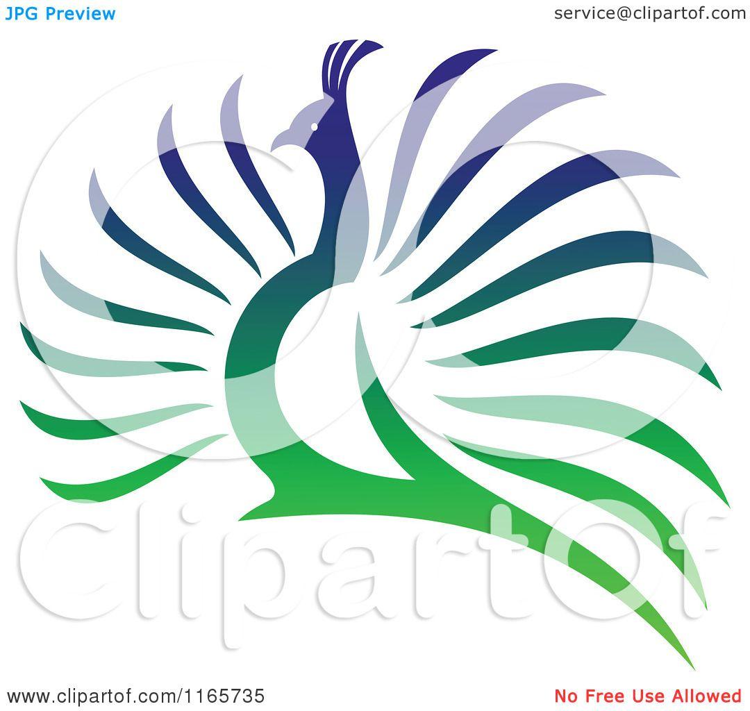 1080x1024 Peacock Clipart Vector