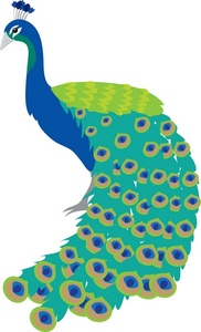 182x300 Beautiful Clipart Peacock 2431113