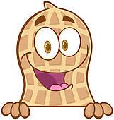 161x170 Peanut Clip Art