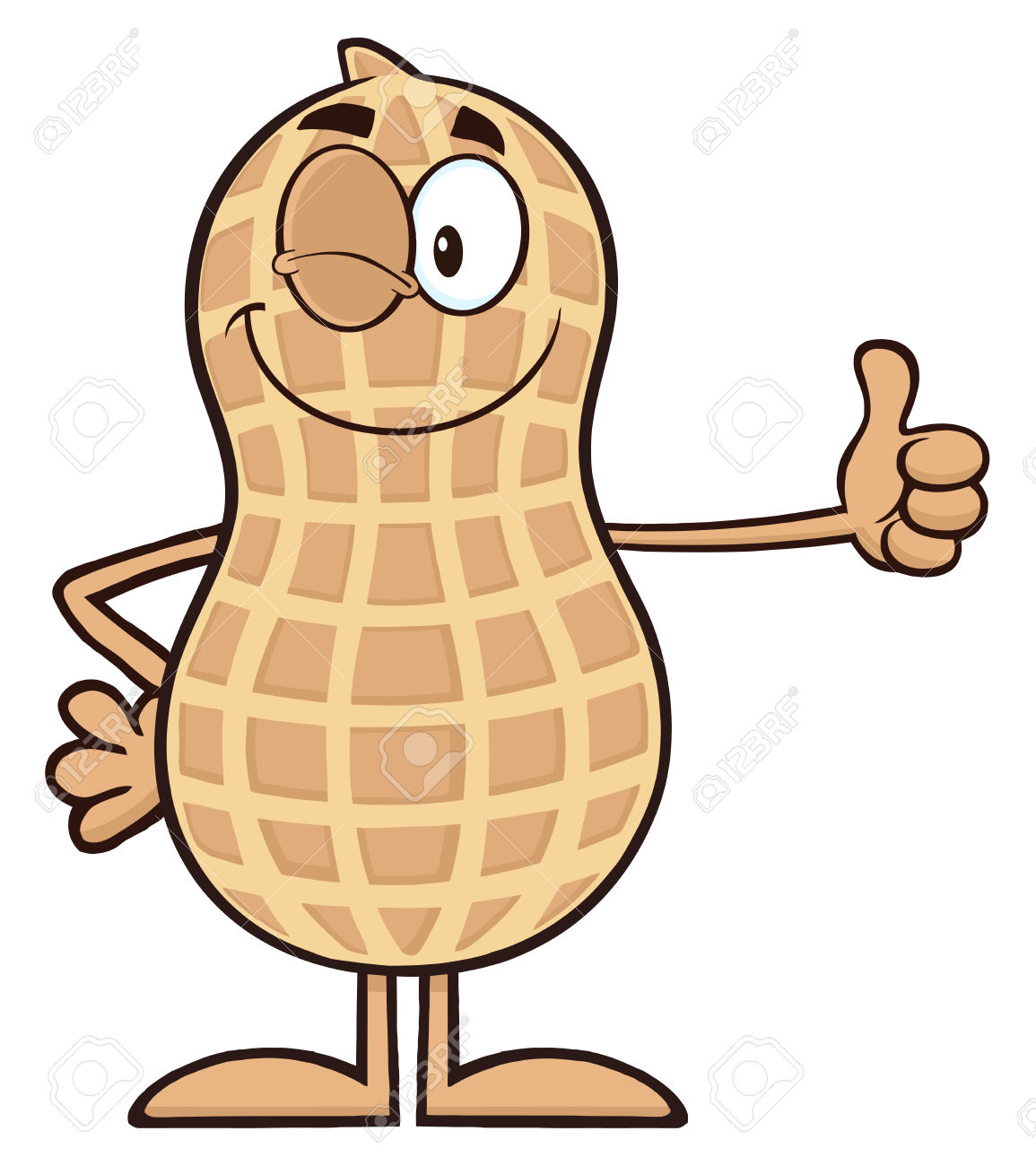 1155x1300 Peanut Clipart Groundnut