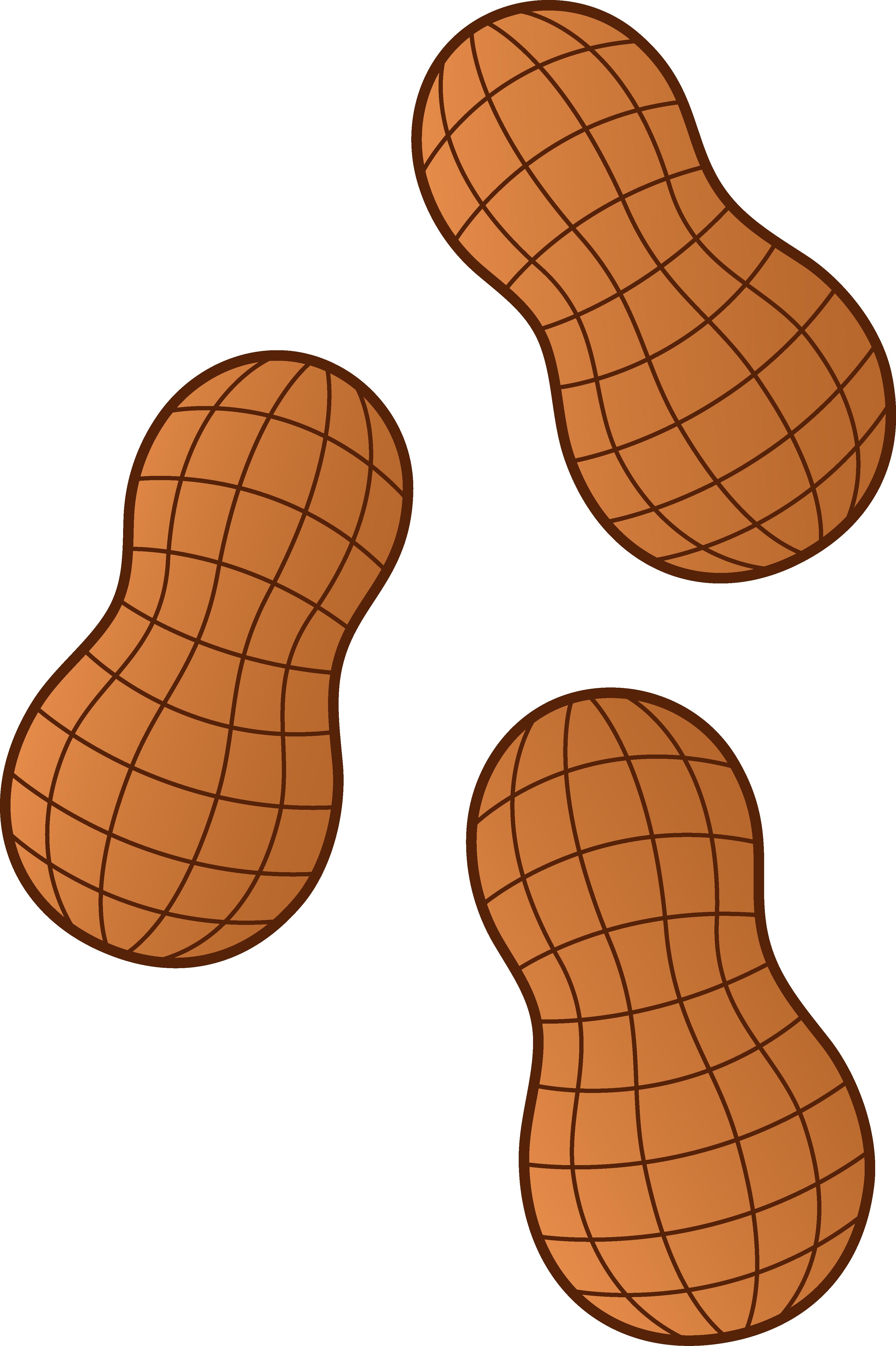 3567x5357 Three Peanuts