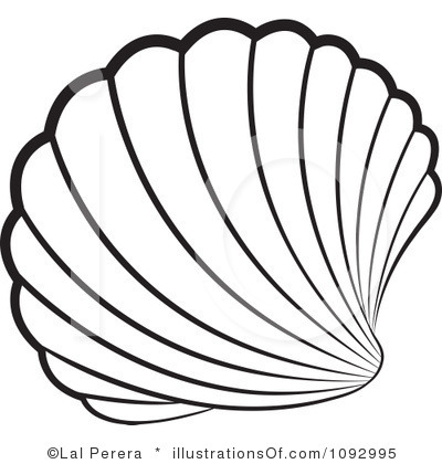 400x420 Drawn Shell Outline