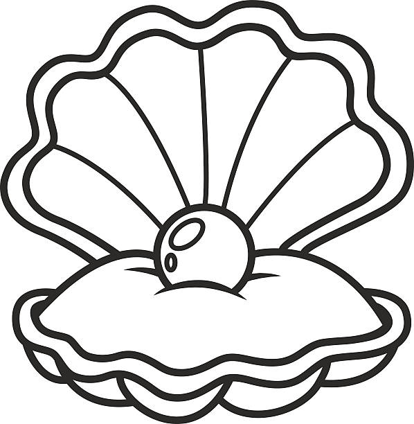 598x612 Pearl Clipart Black And White