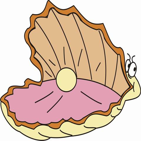 480x480 Pearl Clipart Oyster Drawing