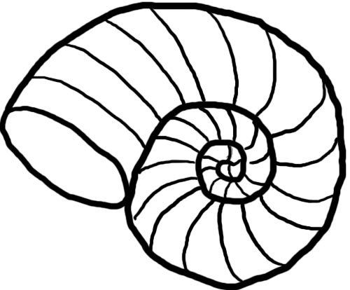 500x414 Shell Clipart Black And White