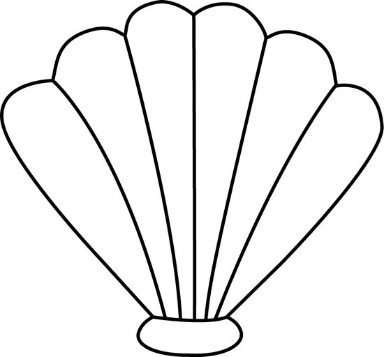 550x512 Shell Clipart Outline
