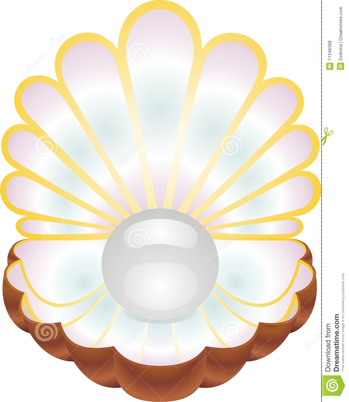 1130x1300 Shell Clipart Pearl