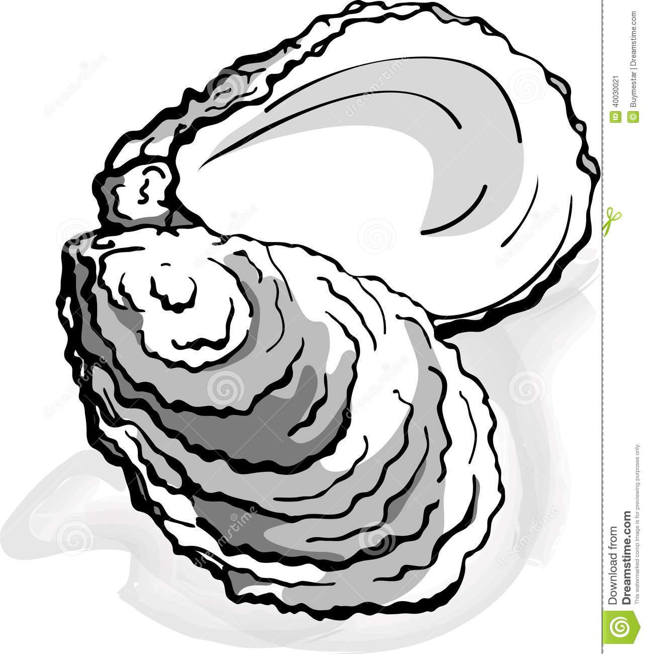1287x1300 Top 92 Oyster Clip Art