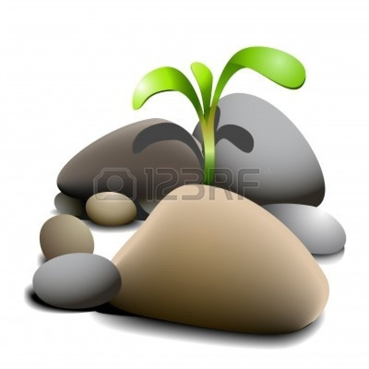 Pebble Clipart Free Download Best Pebble Clipart On
