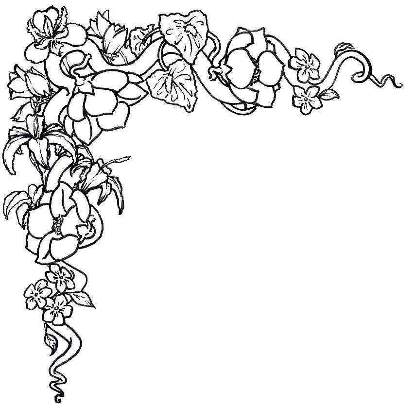 852x832 Drawn Toad Border Clip Art