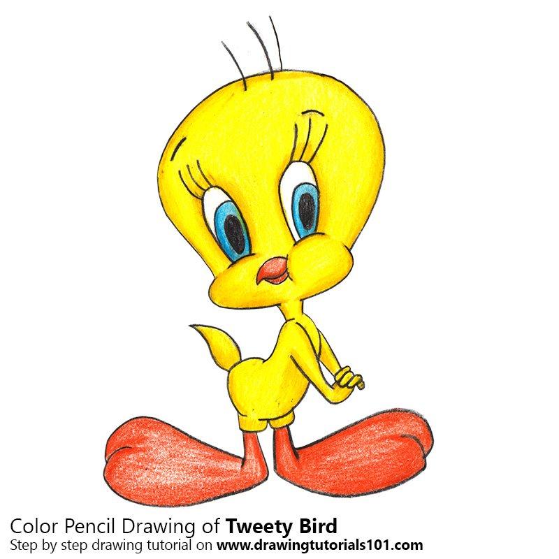 800x800 Tweety Bird Colored Pencils