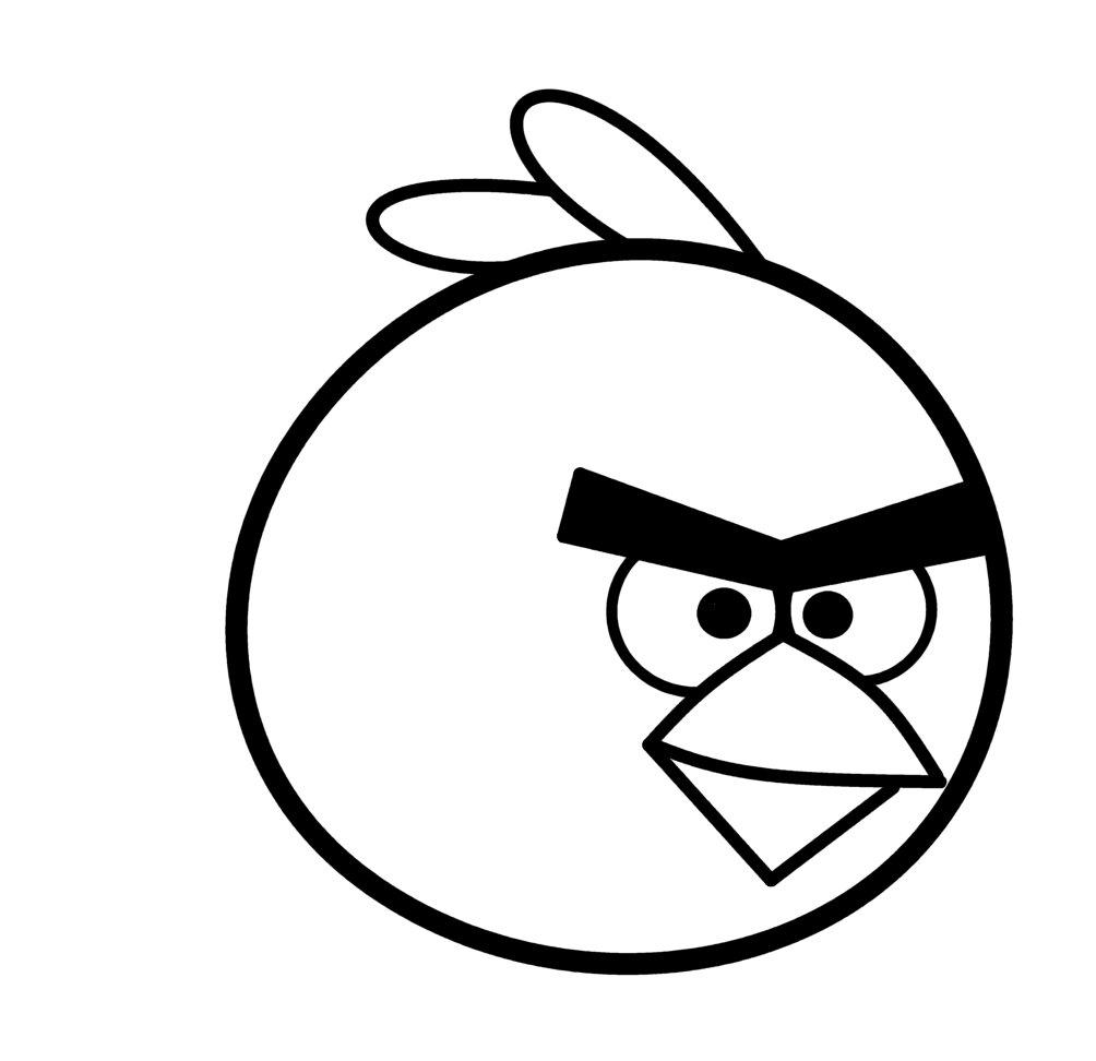 1004x972 Cartoon Bird Drawing Beautiful Bird Pencil Drawings, Art Ideas