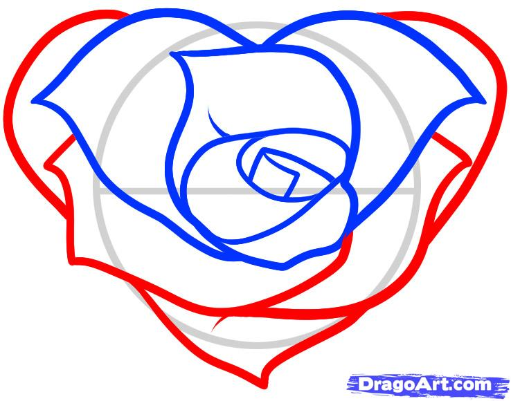 738x580 Drawn Heart Rose