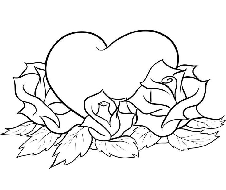 736x620 Pencil Drawings Of Hearts And Roses Collection