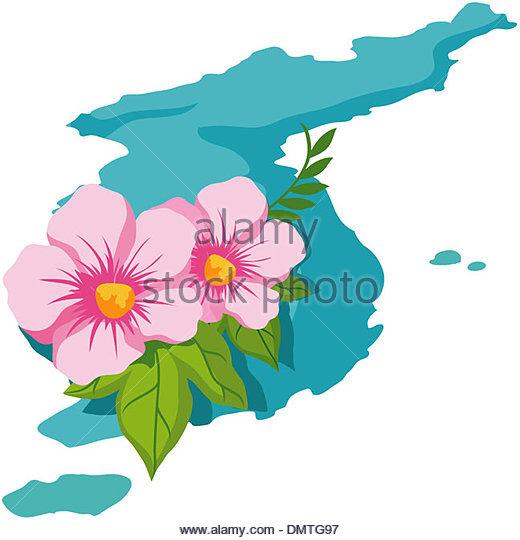 520x540 Map Rose Sharon Korean Stock Photos Amp Map Rose Sharon Korean Stock