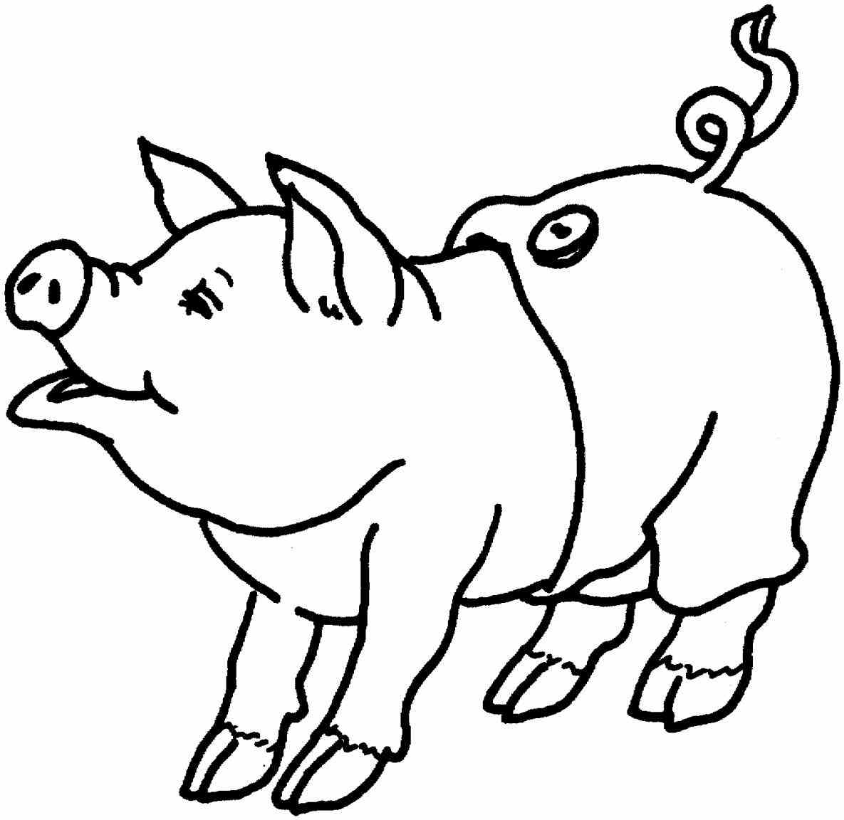 1185x1152 Cute Pig Coloring Pages Page Image Clipart Images