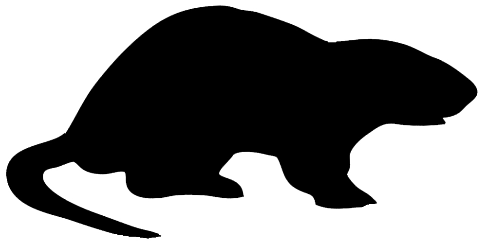 1000x500 Animal Silhouette, Silhouette Clip Art