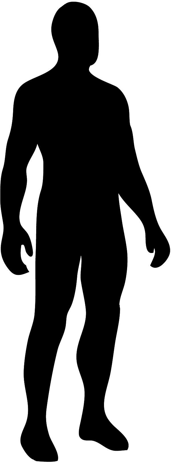 600x1627 Body Silhouette Clip Art Clipart