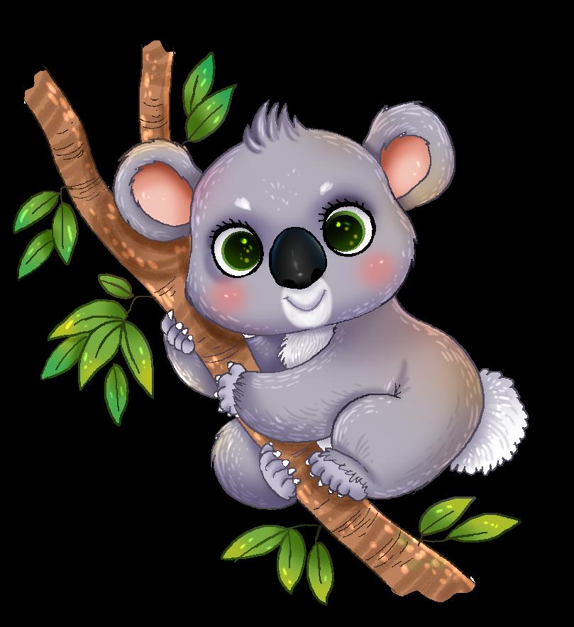 809x884 Koala Clip Art Many Interesting Cliparts