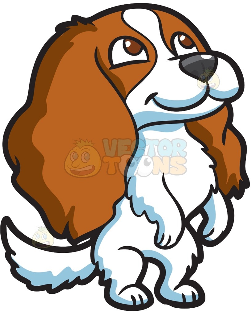 815x1024 Pets Clipart Animal Fur
