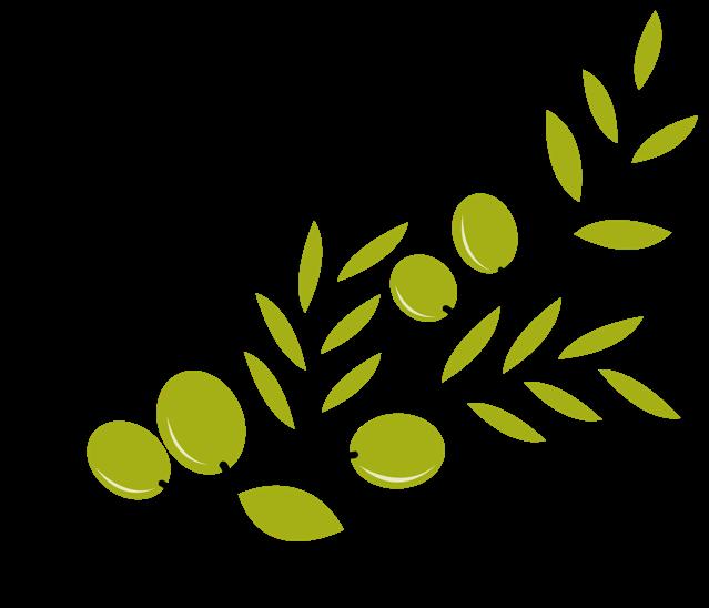 639x548 Olive Branch Clip Art