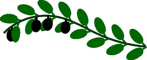 512x212 Olive Branch Clip Art