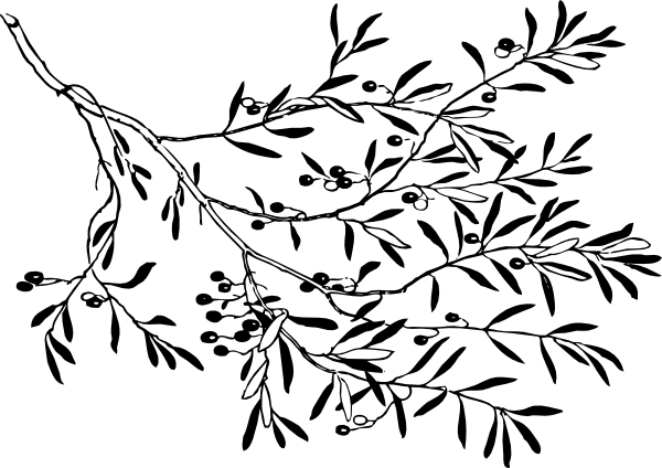 600x424 Black And White Olive Branch Clip Art
