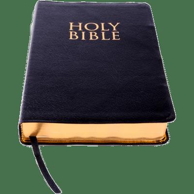 400x400 Holy Bible Clipart Transparent Png