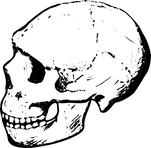 600x590 Skull Clip Art