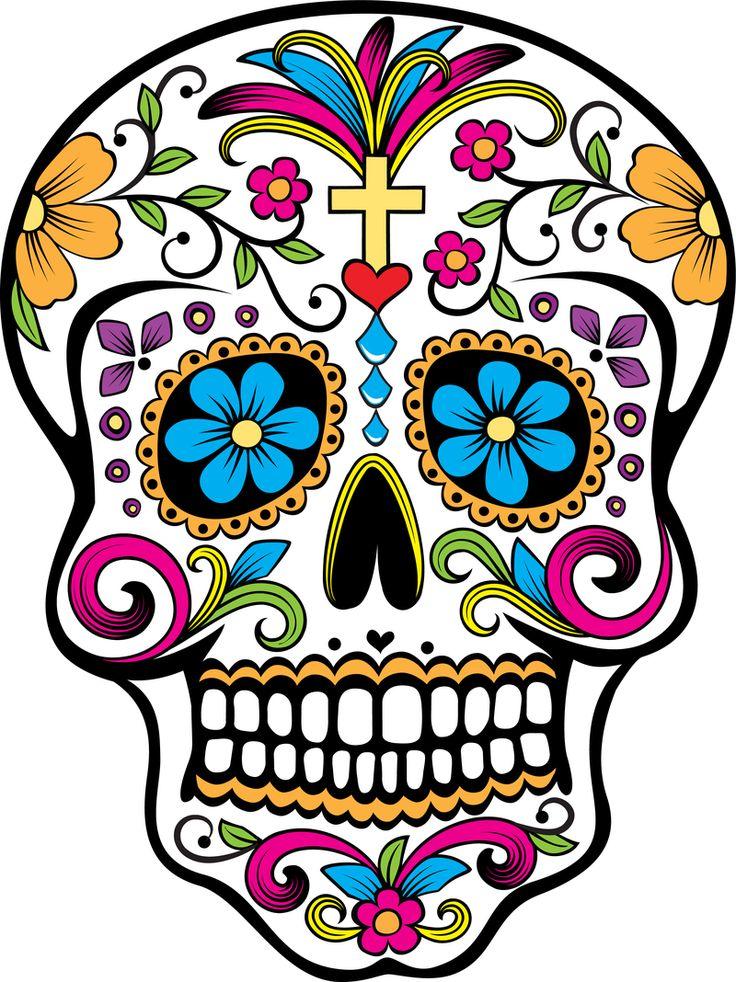 736x982 51 Best Skulls