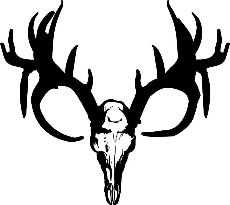 800x712 Best Deer Skull Clip Art