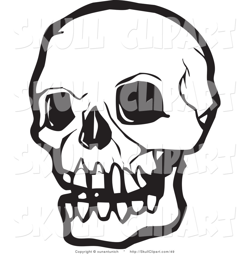 1024x1044 Vector Clip Art Of A Black And White Human Skull With Dark Eye