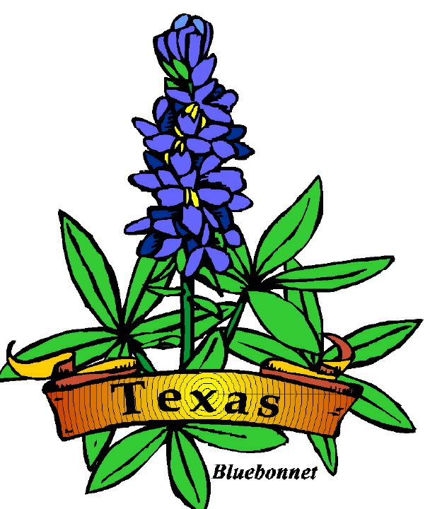 608x720 State Of Texas Clip Art Clipart 2
