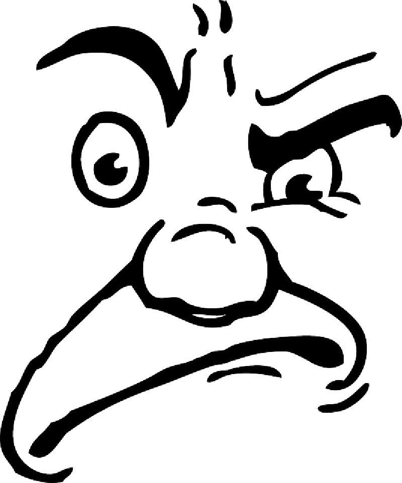 800x962 Mad Face Human Angry Face Clip Art Extravital Fasion