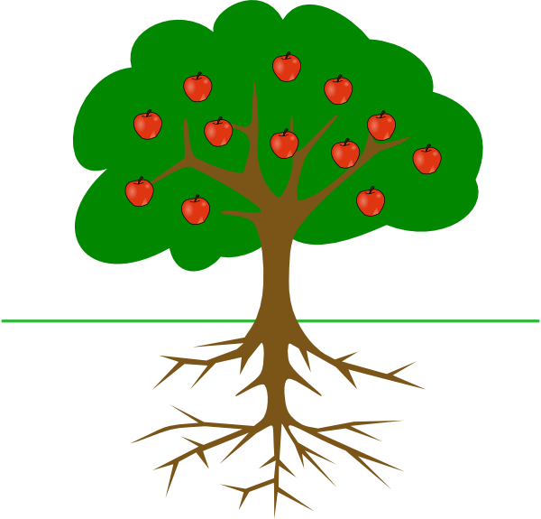 600x575 Apple Tree With Roots Clip Art