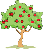 Picture Of A Apple Tree Free Download Best Picture Of A Apple Tree