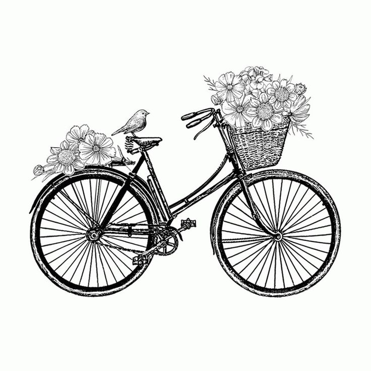 736x736 Best Bicycle Tattoo Ideas Cycling Tattoo, Bike