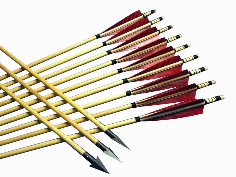 800x600 Best Hunting Arrows Ideas The Hunting Life