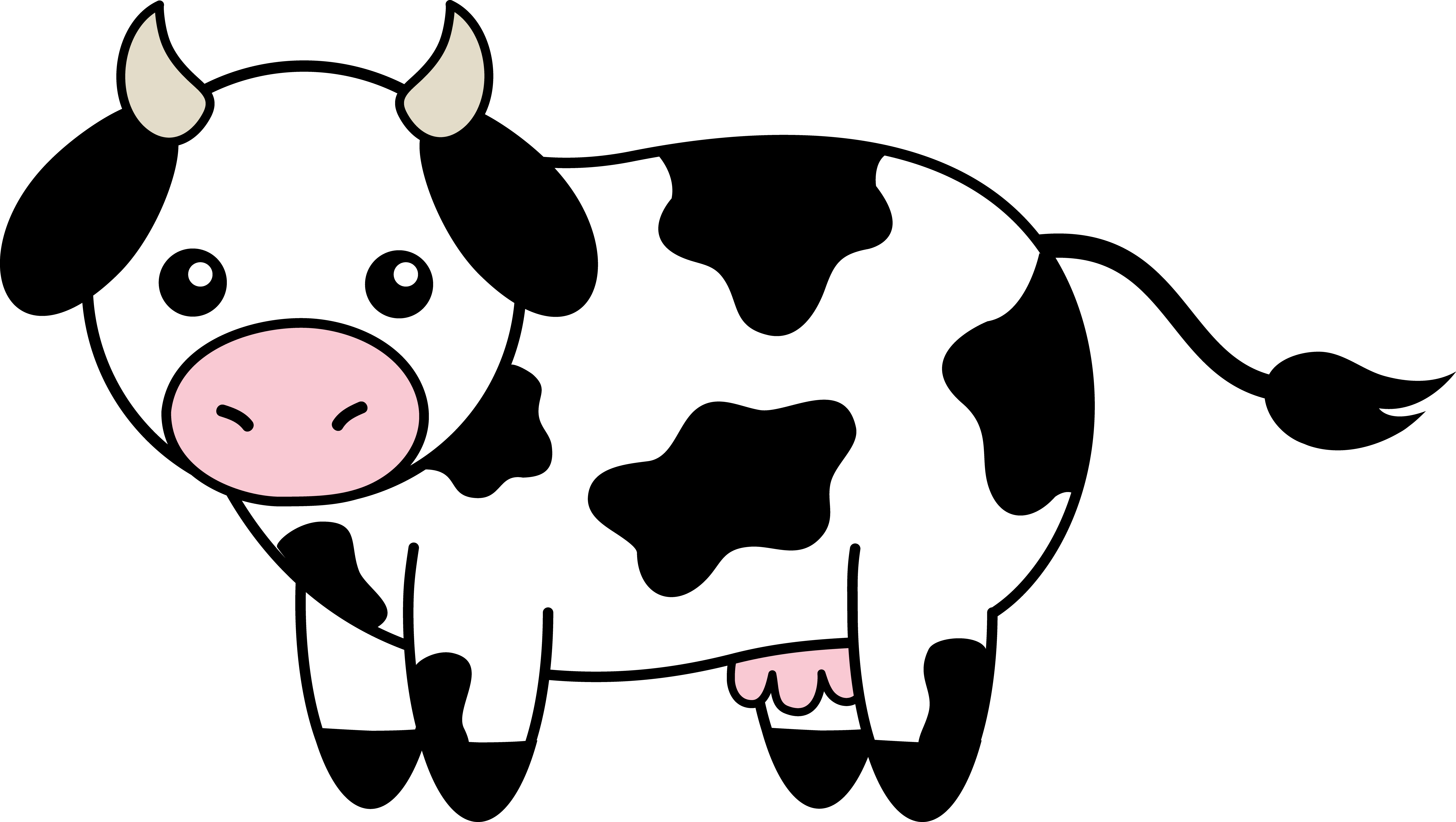 7510x4240 Cute Black And White Cow