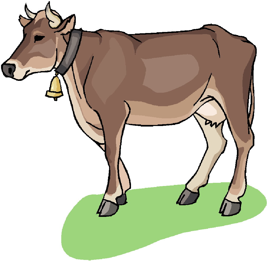 1011x988 Free Cow Clipart