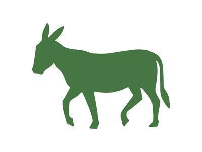 400x300 Donkey Posters