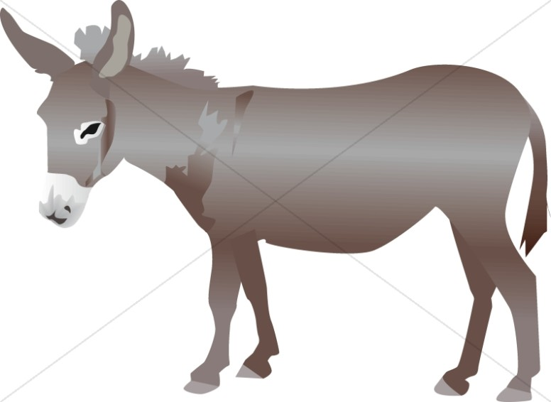 776x566 Donkey Clipart Nativity Animal