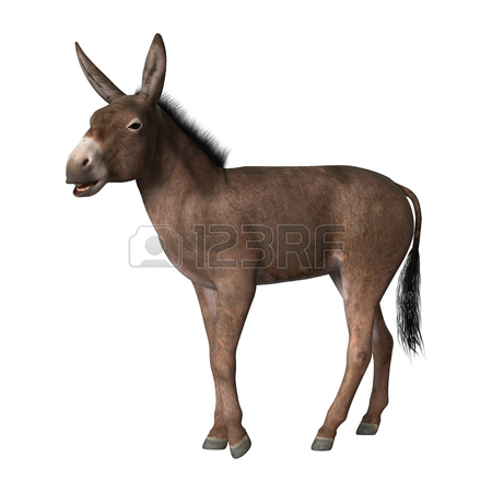 450x450 3d Donkey Stock Photos Amp Pictures. Royalty Free 3d Donkey Images