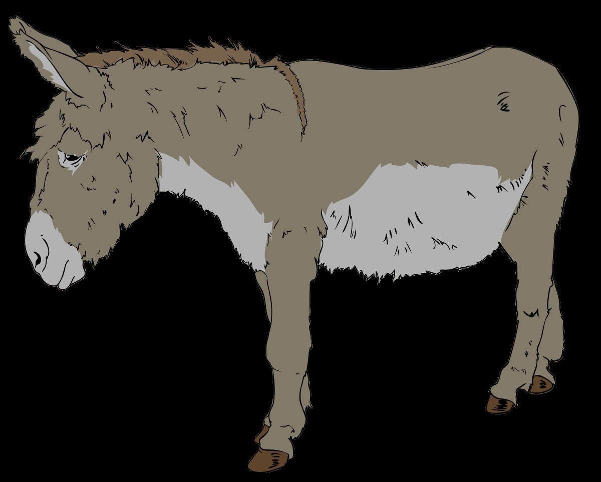 1200x963 Benjamin (Animal Farm)
